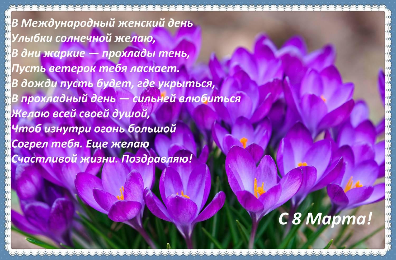 Лучшие короткие смс поздравления с 8 марта в стихах фото