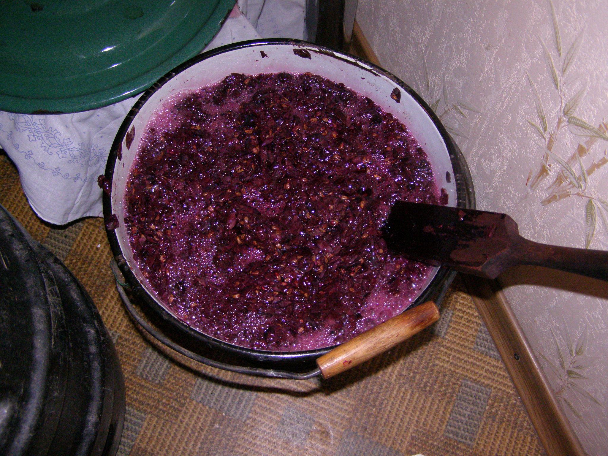 Вино виноградное в домашних условиях — простой рецепт, как сделать домашнее виноградное вино фото