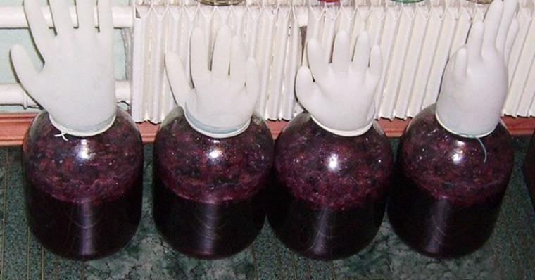 Вино из винограда Молдова в домашних условиях простой рецепт с фото