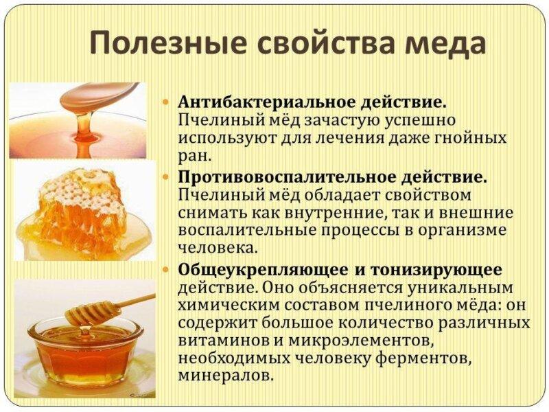 Полезные свойства меда фото