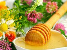 Цветочный мед полезные свойства и противопоказания фото