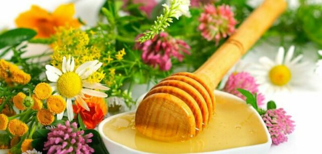Цветочный мед: полезные свойства и противопоказания