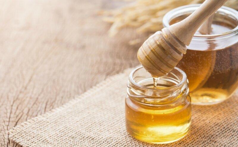 Сафлоровый мед, что это такое — особенности меда из сафлоры фото