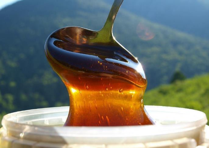 Горный мед — полезные свойства и противопоказания фото