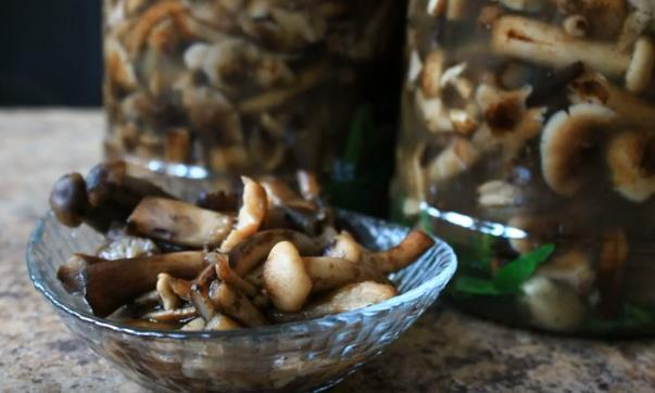Как приготовить самые вкусные маринованные грибы опята на зиму