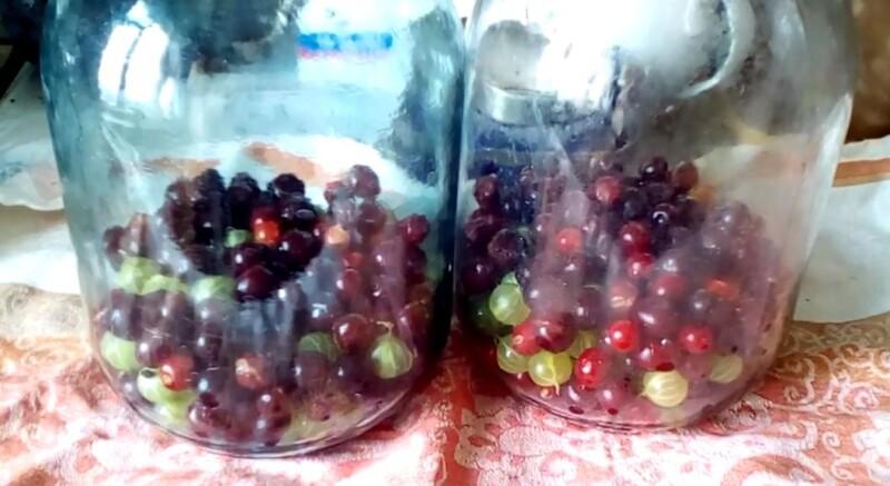 разложить ягоды
