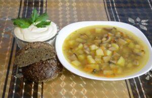 Грибной суп — самые вкусные рецепты из свежих, сушеных и замороженных грибов