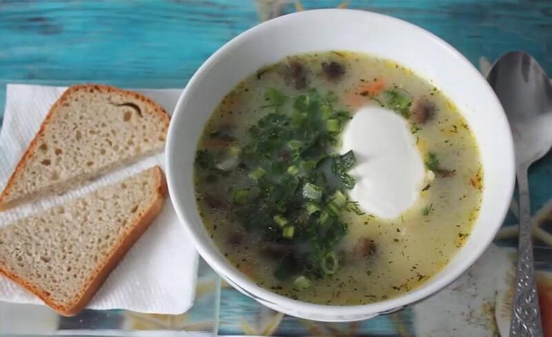 Рецепт грибного супа из замороженных опят. Самый вкусный рецепт